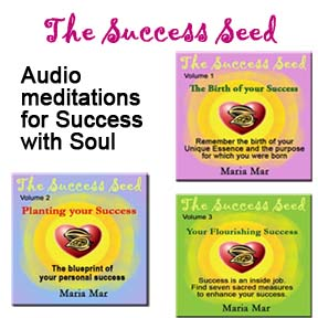 The Success Seed Audio Journeys