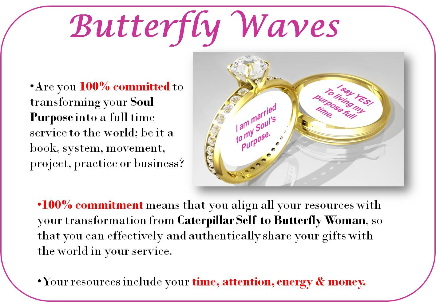 slideshow-butterfly-waves-3CB-marry-purpose