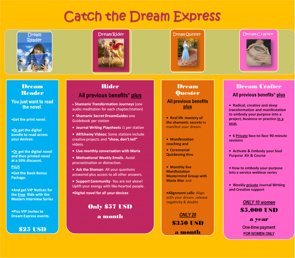 dream-express-membership-chart-2015-D